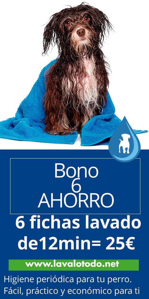 bono6 baño frecuente lavado mascotas barcelona lavado perros lavalotodo.net